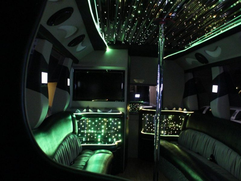 14-16 Passenger Party Bus